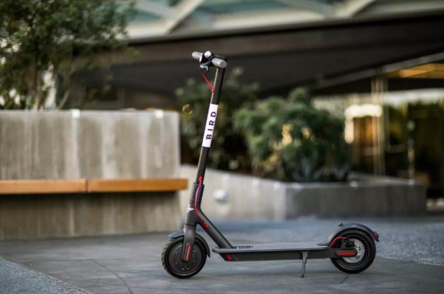 A Bird scooter. Image Credit: Bird